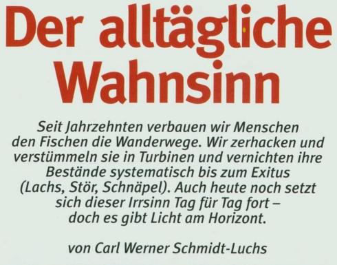 http://www.fliessgewaesserschutz.de/images/Alltaeglicher_Wahnsinn/Alltaeglicher_Wahnsinn_Bild_8_490x385.jpg